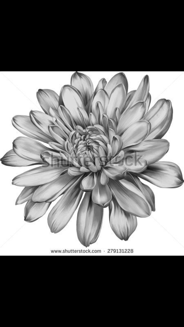 Waylon Kevin Jules November Birth Flower Tatoo Idea
