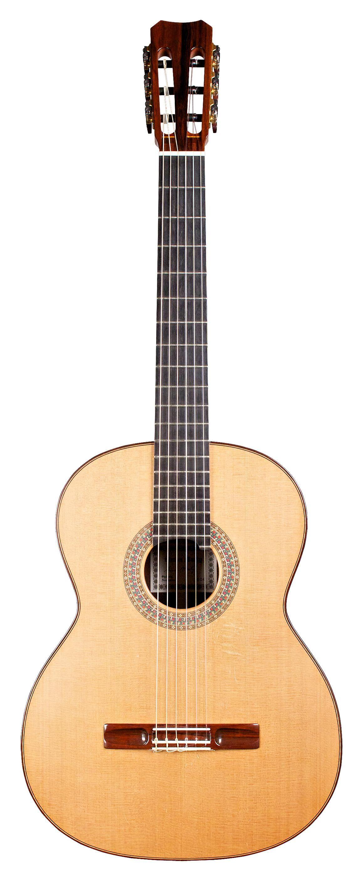 Simon Marty Instrumentos Musicales Guitarras Musicales