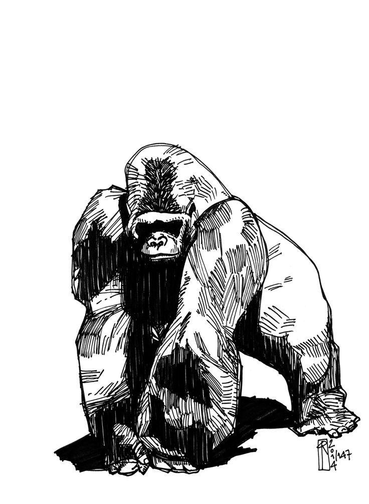 af51eb1d2 draw tattoo tiere unterarm tattoo gorilla tattoo ideen tattoo ...