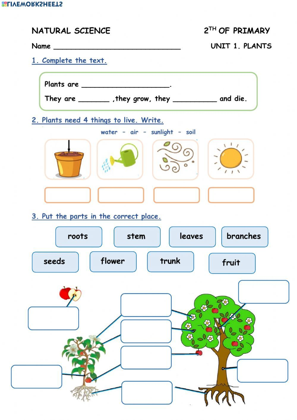 Plants Interactive And Downloadable Worksheet You Can Do The Exercises Online Or Download The Plants Worksheets Science Worksheets Science Lessons Elementary [ 1413 x 1000 Pixel ]