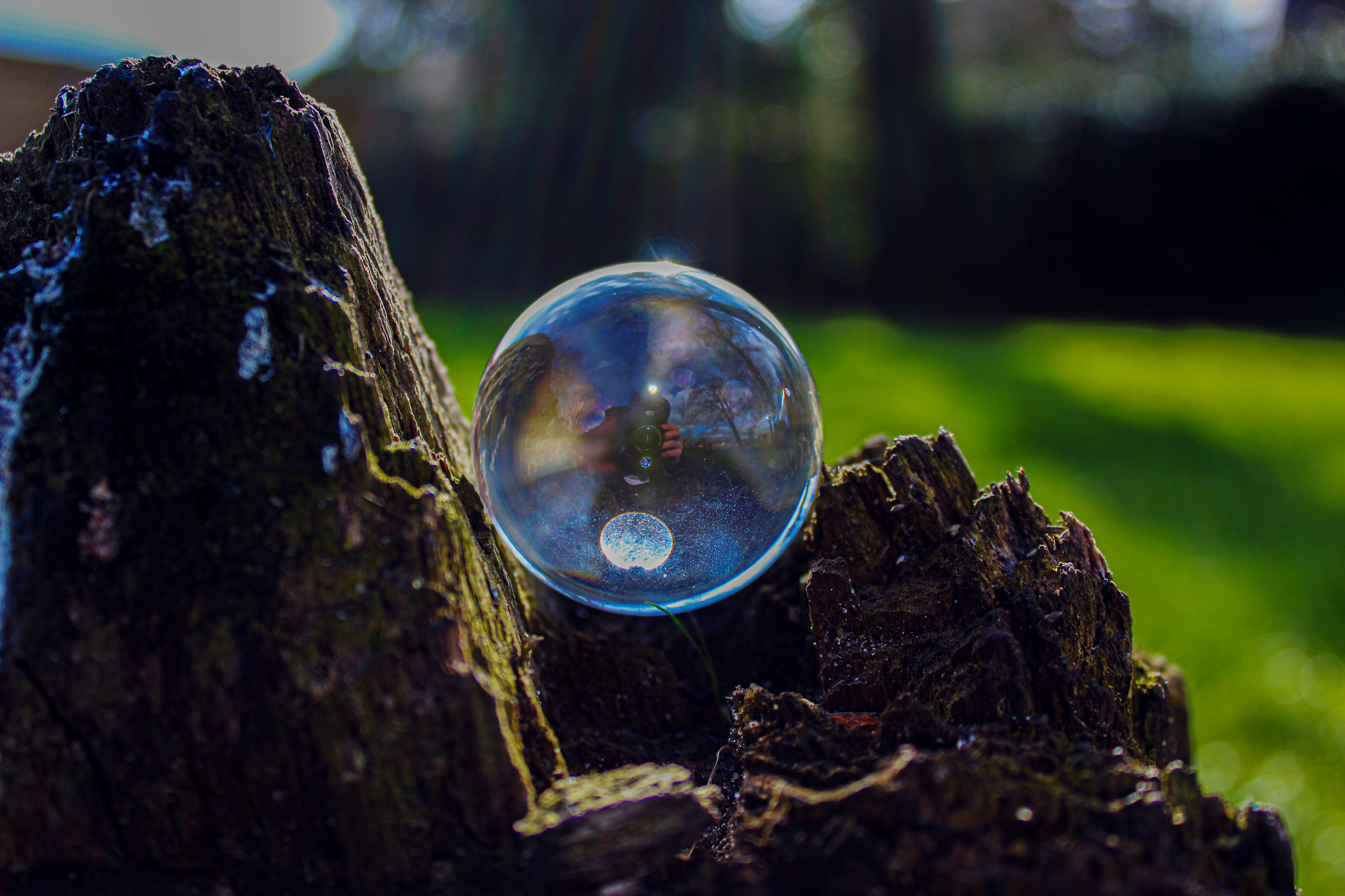 Had so much fun shooting through one of these. I recommend photographers buying this if you want to try new things  #photography #naturephotography #nature #reflection #crystalball #treestump