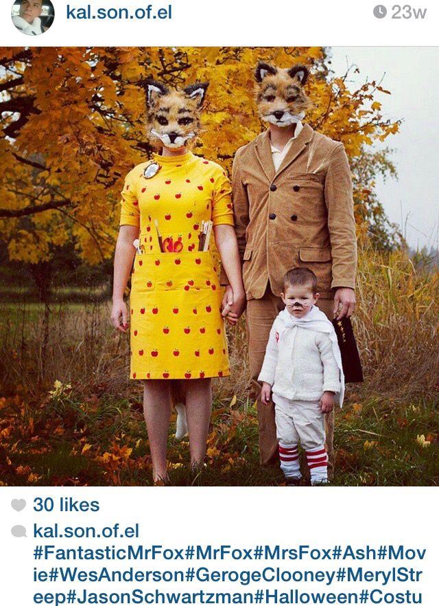 Fantastic Mr Fox Diy Fox Halloween Costume Fantastic Mr Fox Costume Family Halloween Costumes