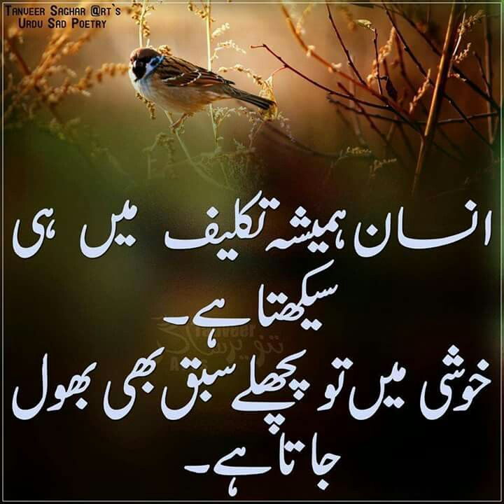 تکلیف اور سیکهنا..... Urdu quotes, Motivational quotes
