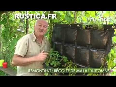 Mur végétal exterieur 12 poches - Mur Végétal, Jardin Vertical