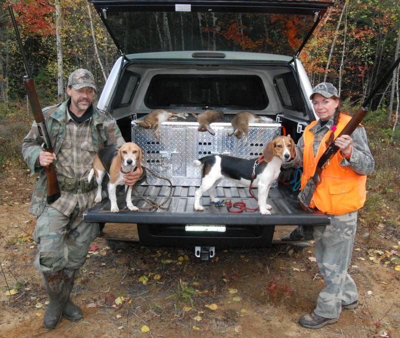 Train A Dog For Rabbit Hunting Rabbit Hunting Dog Training