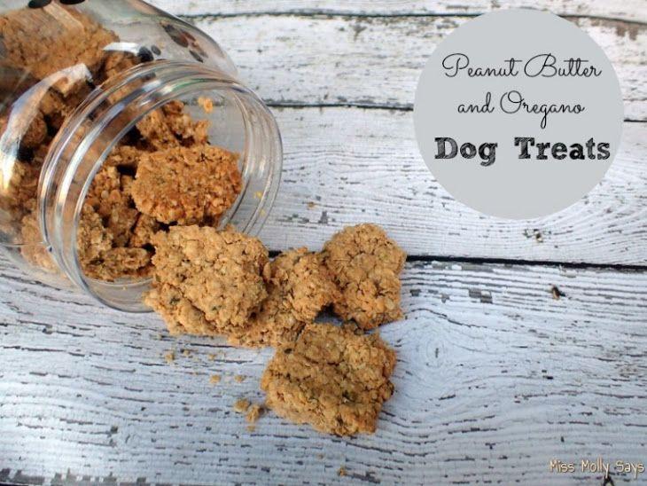 Peanut Butter And Oregano Dog Treats Recipe Doggie Treats