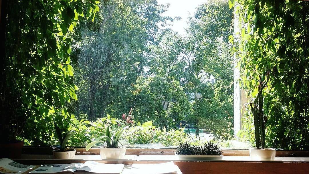 : : The Aalto House  정원도 또 하나의 방이라 생각했던 알바 알토가 자연을 대하는 태도  #alvaraalto #livingroom by thehyorim