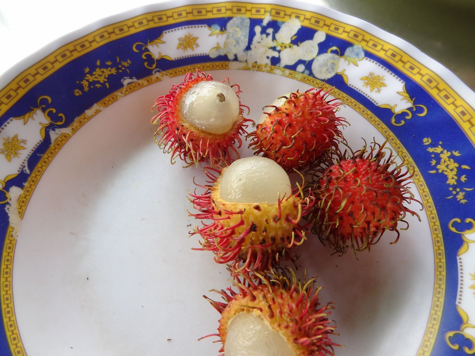 exotic fruit (cambodia) hairy eyebals!!   my favorite things