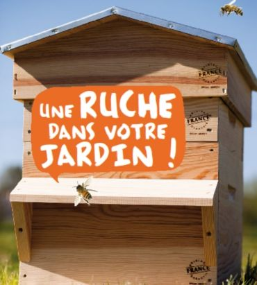 installer une ruche dans son jardin conseils et astuces bioaddict jardin pinterest. Black Bedroom Furniture Sets. Home Design Ideas