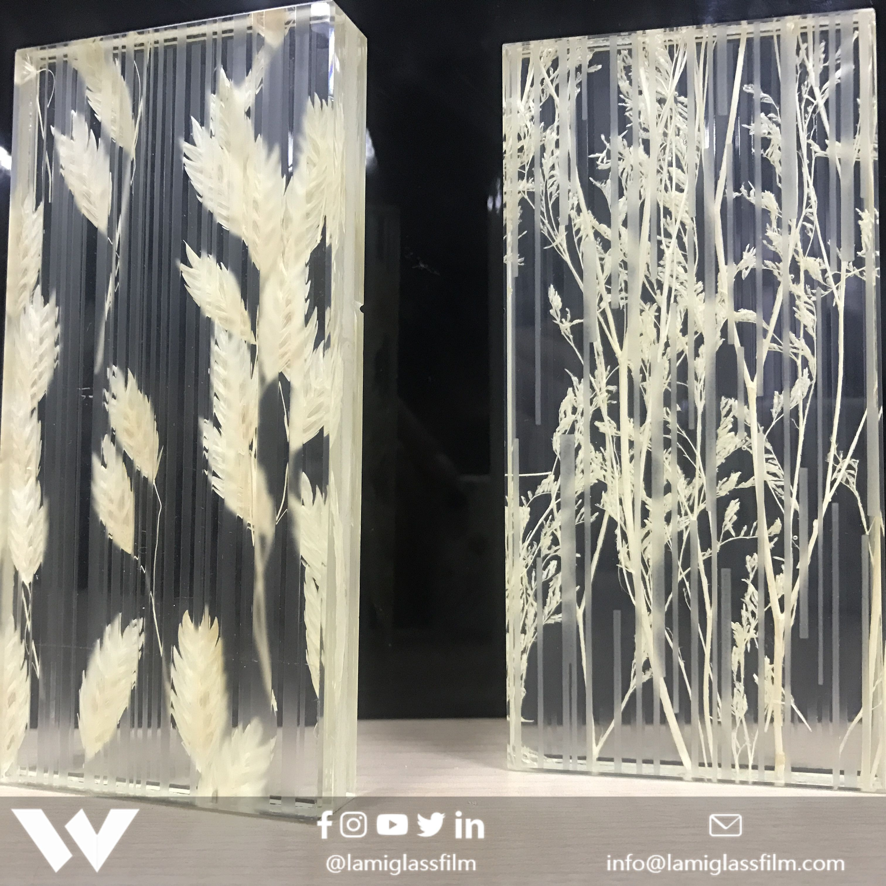 How Beautiful Plant Laminated Glass We Can Provide You High Quality Inserts And Eva Film If You Are A Glass Processor Laminated Glass Glass Safety Glass