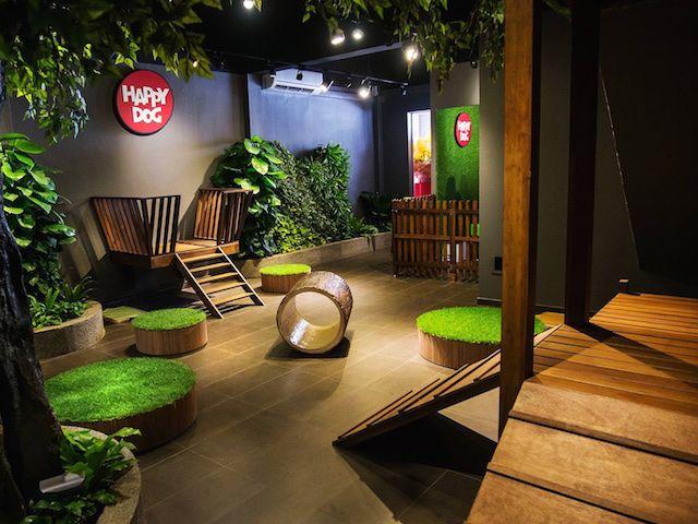 pingl par lucie fortin sur accessoires pour animaux. Black Bedroom Furniture Sets. Home Design Ideas