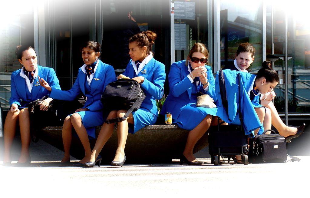 flygc.info KLM Flight Attendant Job Vacancies KLM Intern