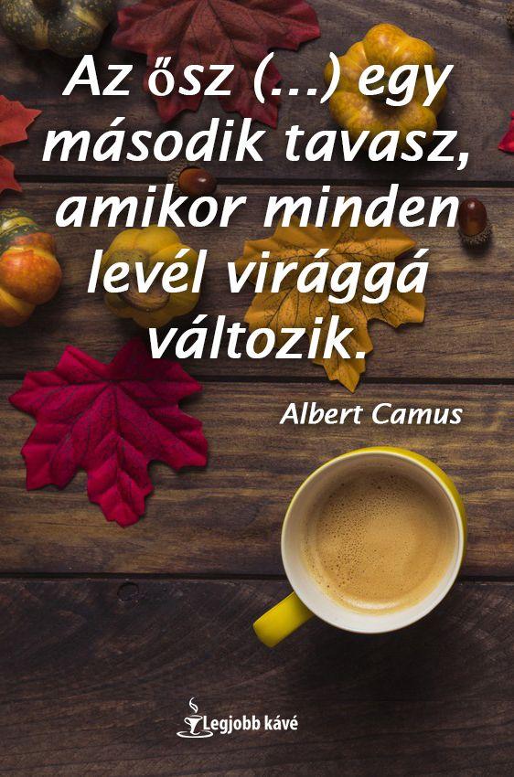 motivációs levél idézetek Az ősz () egy második tavasz, amikor minden levél virággá
