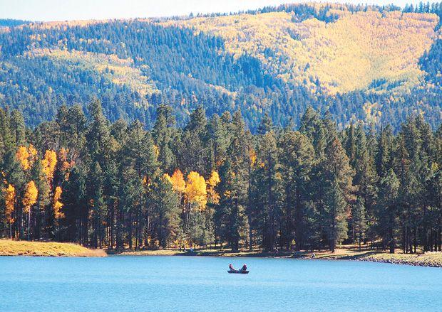 White Mountain Fishing Report Lake Fishing Rainbow Lake Pier Fishing
