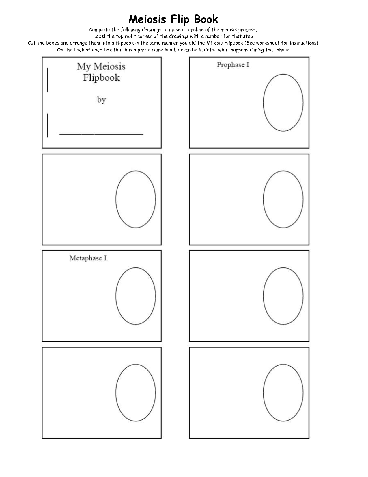 Mitosis Coloring Worksheet