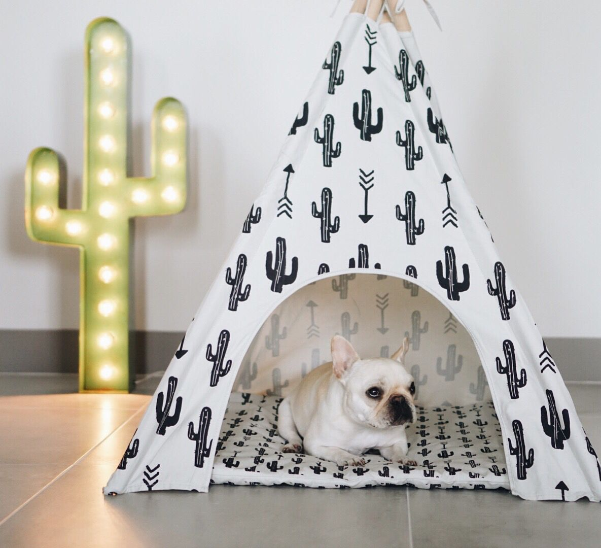 cactus teepee by Pipolli | Dog boutique, Dogs, Dog
