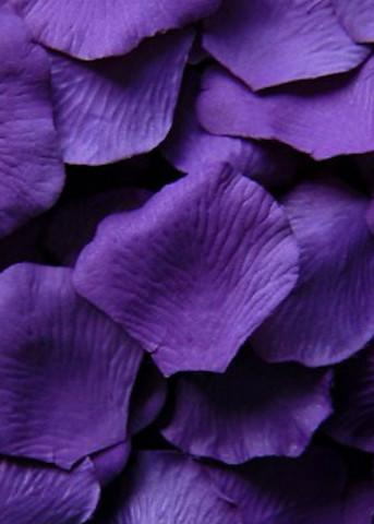 Loose Silk Rose Petals In Stunning Purple Perfect For Decorating Table Tops Or To Be Used For Flowe Purple Wedding Flowers Flower Girl Petals Silk Rose Petals