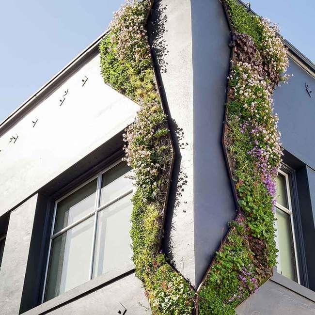 Vertical Green Wall, Vertical Garden