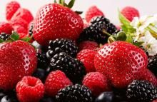 وجبات خفيفة صحية للسفر Berry Salad Nutrition Healthy Eating Nutritious Snacks