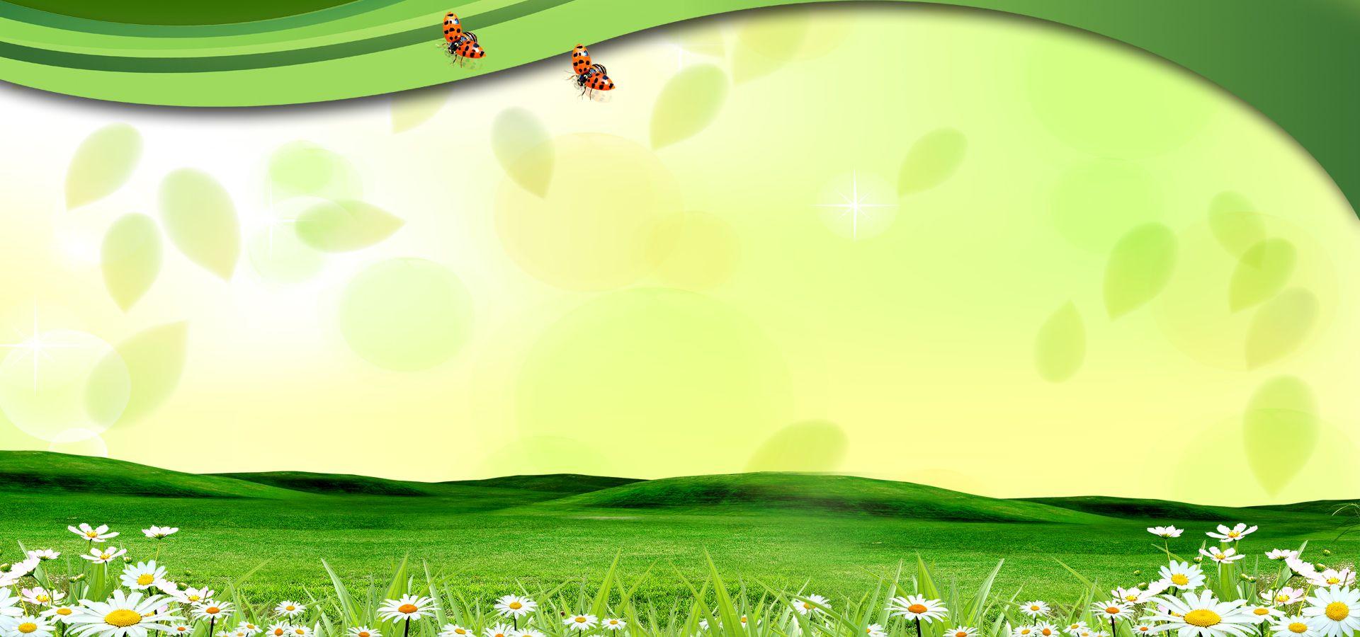 Simple Natural Green Leaf H5 Illustration In 2020 Green Backgrounds Green Nature Backdrops Backgrounds