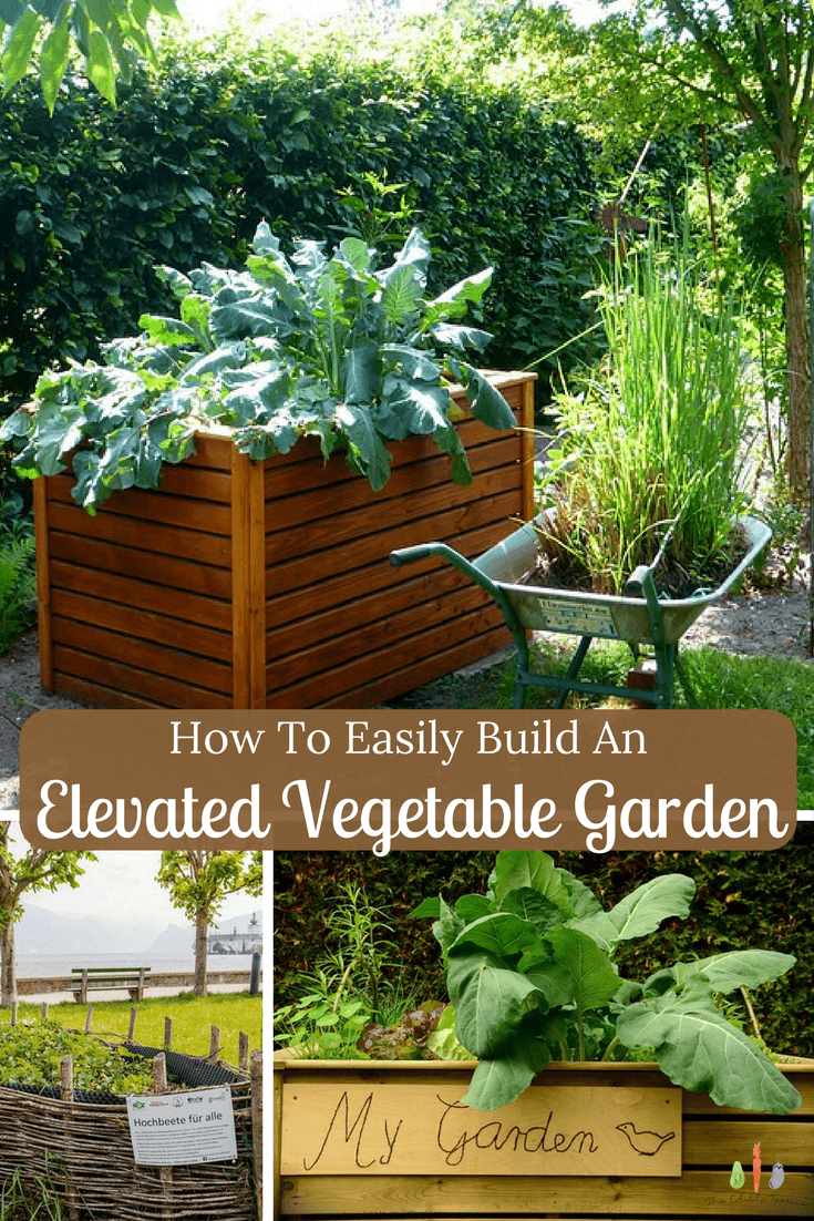 How To Easily Build an Elevated Vegetable Garden (Video) | My garden ...