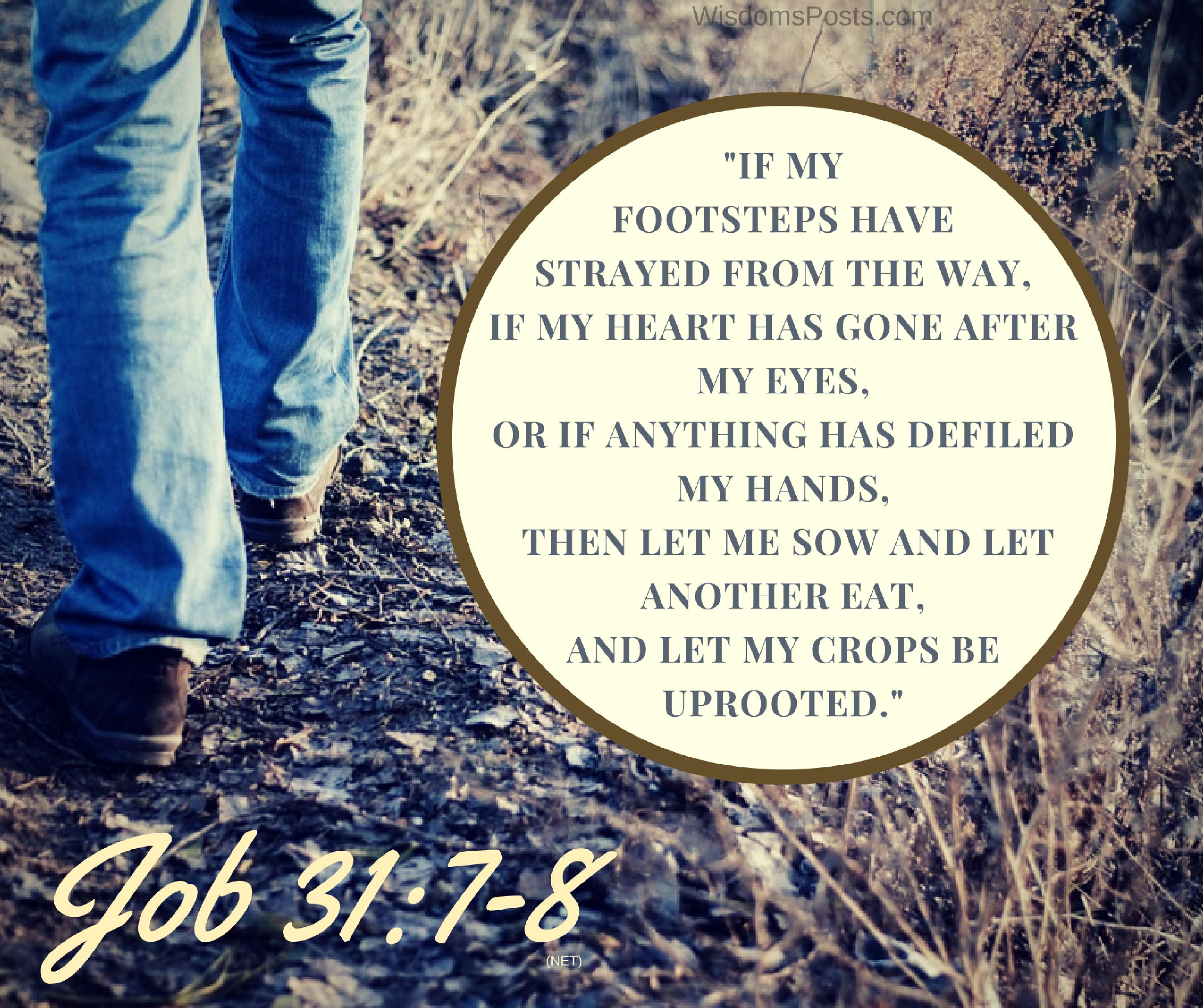 Job 31:7-8 | Job 31 - The Righteous Man | Windows xp product