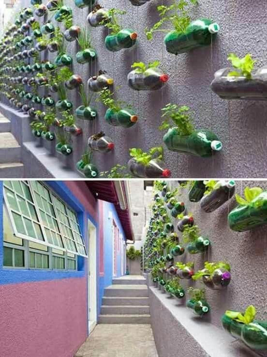 Para patios pequenos