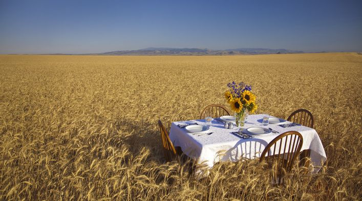 From Our Farm to Your Table | Wheat Montana