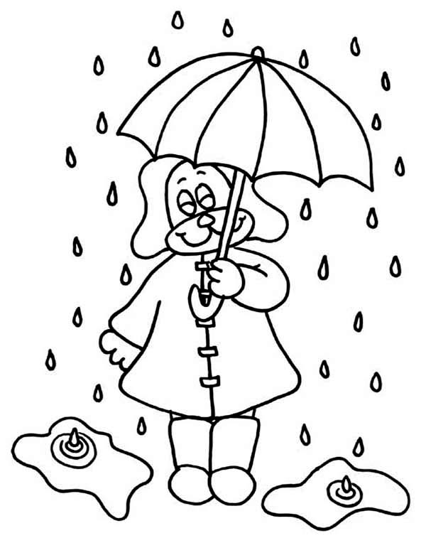 Little Puppy Under Raindrop With Umbrella Coloring Page Color Luna Umbrella Coloring Page Coloring Pages Little Puppies
