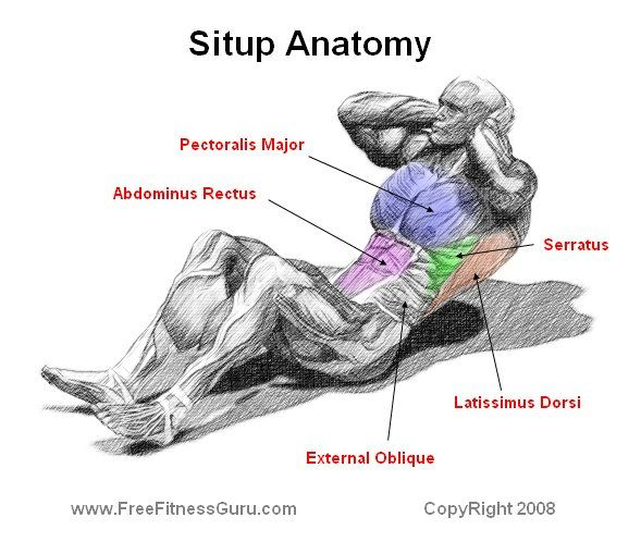 Situp Build What Muscles