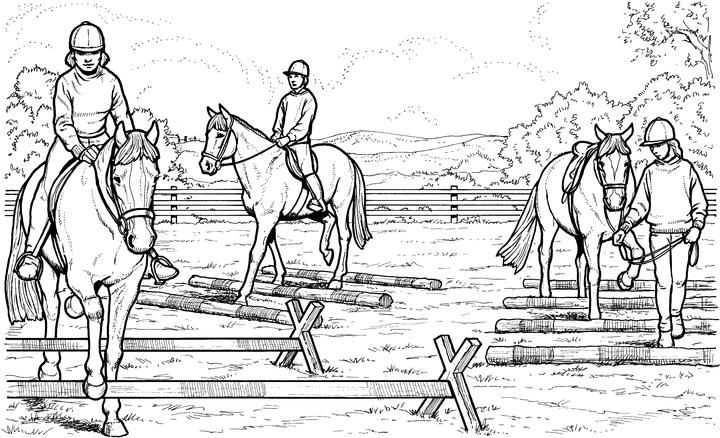 horse riding images free  google search  horse coloring