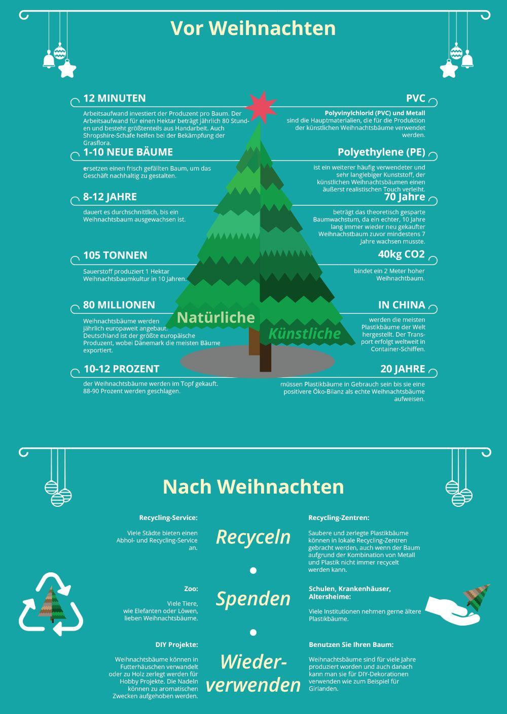 Welches Sind Die Popularsten Weihnachtsbaume Wie Lange Wachst Ein Baum Haben Plastikbaume Eine Bessere Oko Bilanz Und Warum H Weihnachtsbaum Christbaum Baum