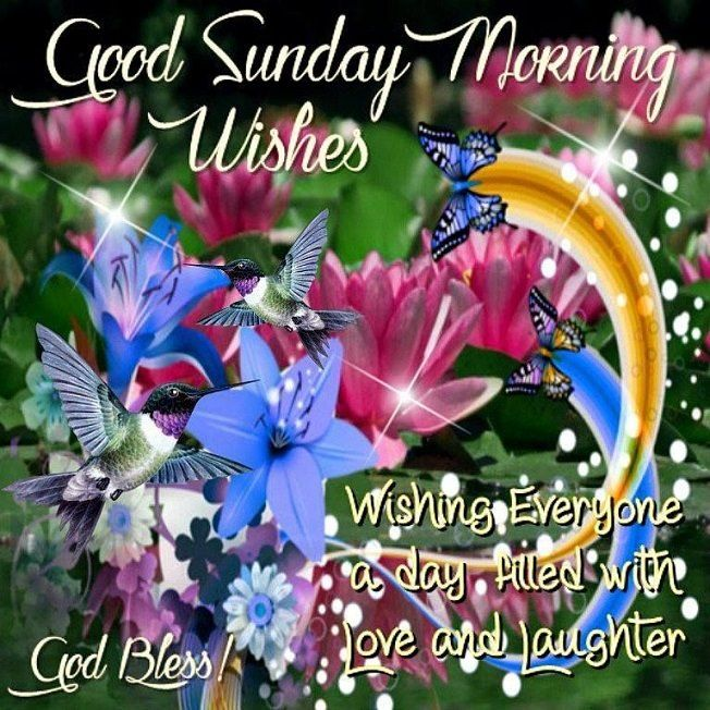 Good Morning Everyone!! Happy Sunday, I pray that you have a safe, happy and