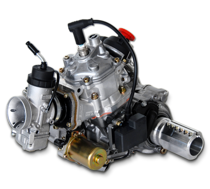 125 MAX DD2For carting  32 6 hp @ 11 750 rpm  Rotax | Small engines