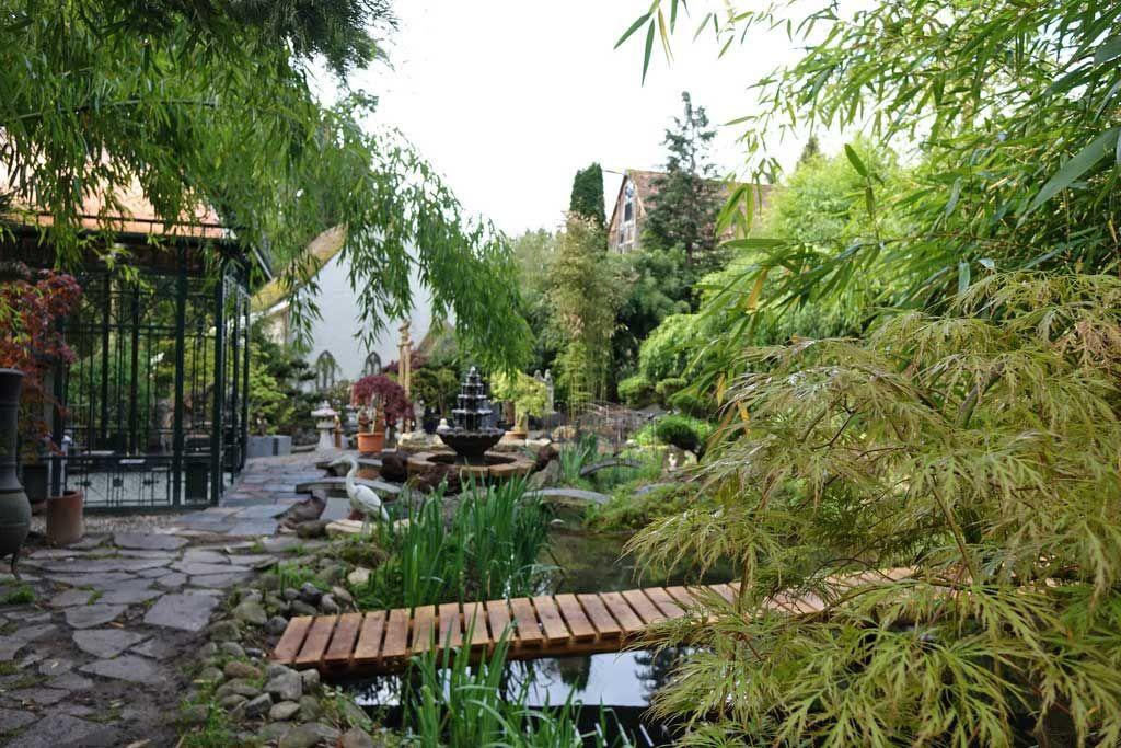 Bildergebnis für bambus Hausplanze für drinnen GARTEN IDEE - japanischer garten bambus