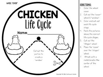 Chicken Life Cycle Interactive Wheel Craft FREEBIE