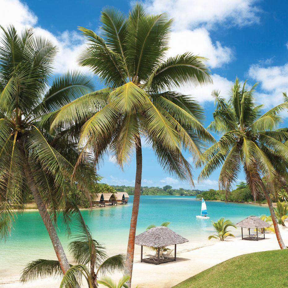 Vanuatu Beaches: Aore Island Resort Vanuatu 07