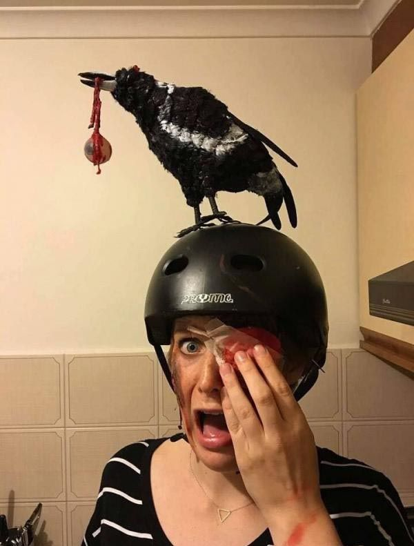 A Costume For Those Afraid Of Birds - LolSnaps