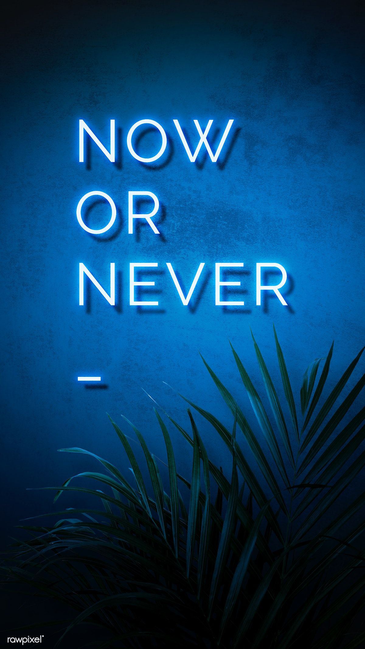 Download free illustration of Neon blue now or never sign on a wall 894326