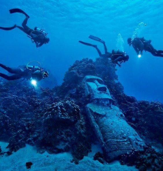 Pin On Scuba Diving Trips For Adults