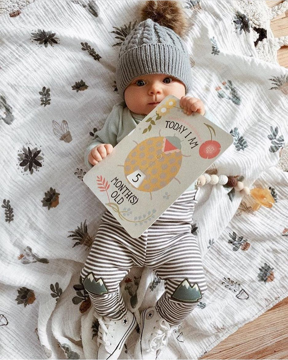 285294f46 5 month old cutie! @_kellypacker Milestone Card Packs at ...