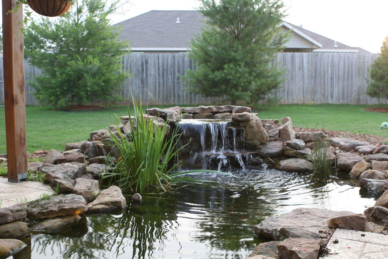2501 Nw 6th Street Bentonville Waterfalls Backyard Backyard