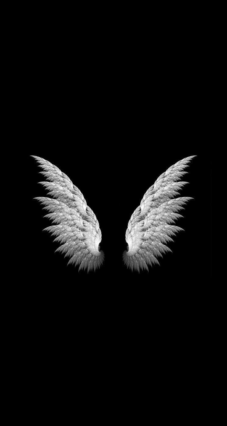 天使の羽 モノクロの壁紙画像