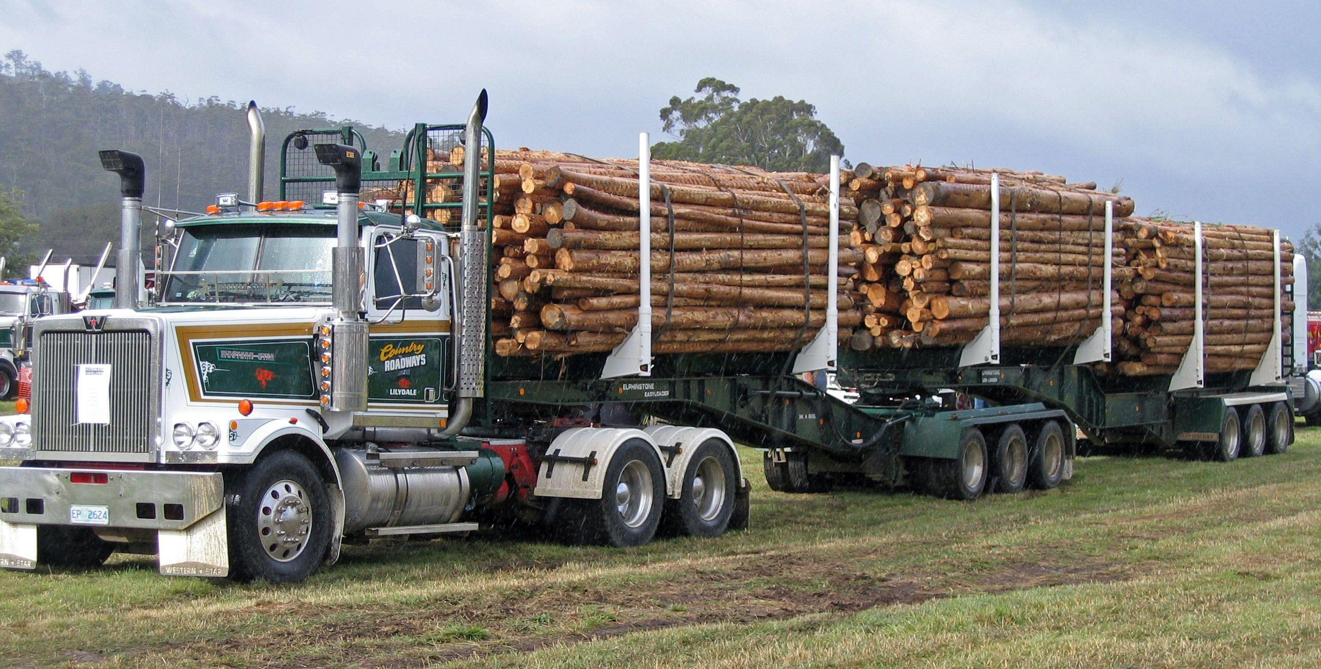 Timber Industry Forestry Tasmania Think Tasmania Com Western Star Trucks Trucks Dump Trucks