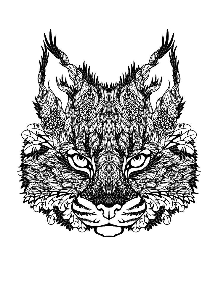 Hard Cat Coloring Pages