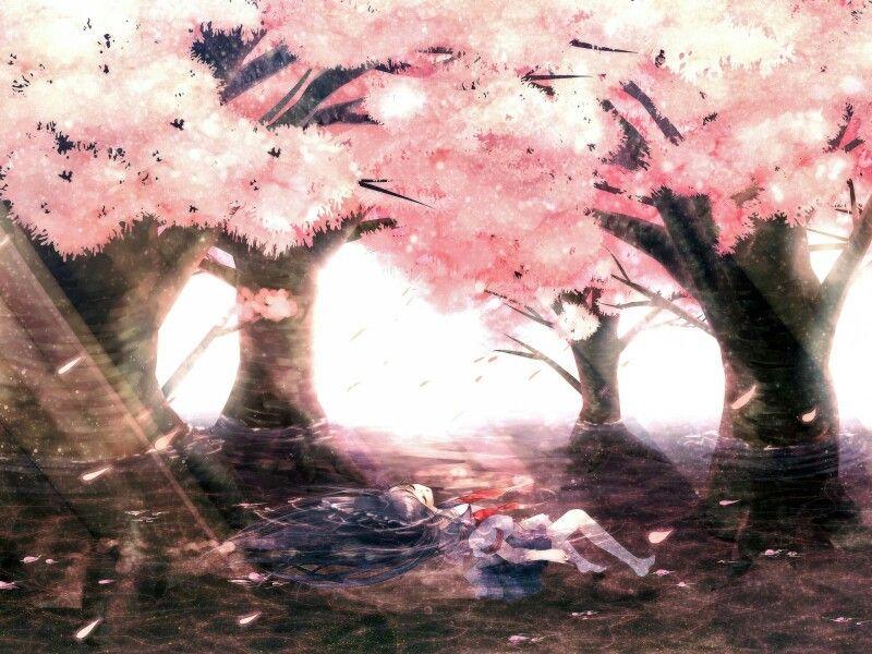 Girl School Uniform Daylight Sakura Trees Pink Water Anime Cherry Blossom Anime Cherry Blossom Wallpaper Autumn cherry blossom wallpaper