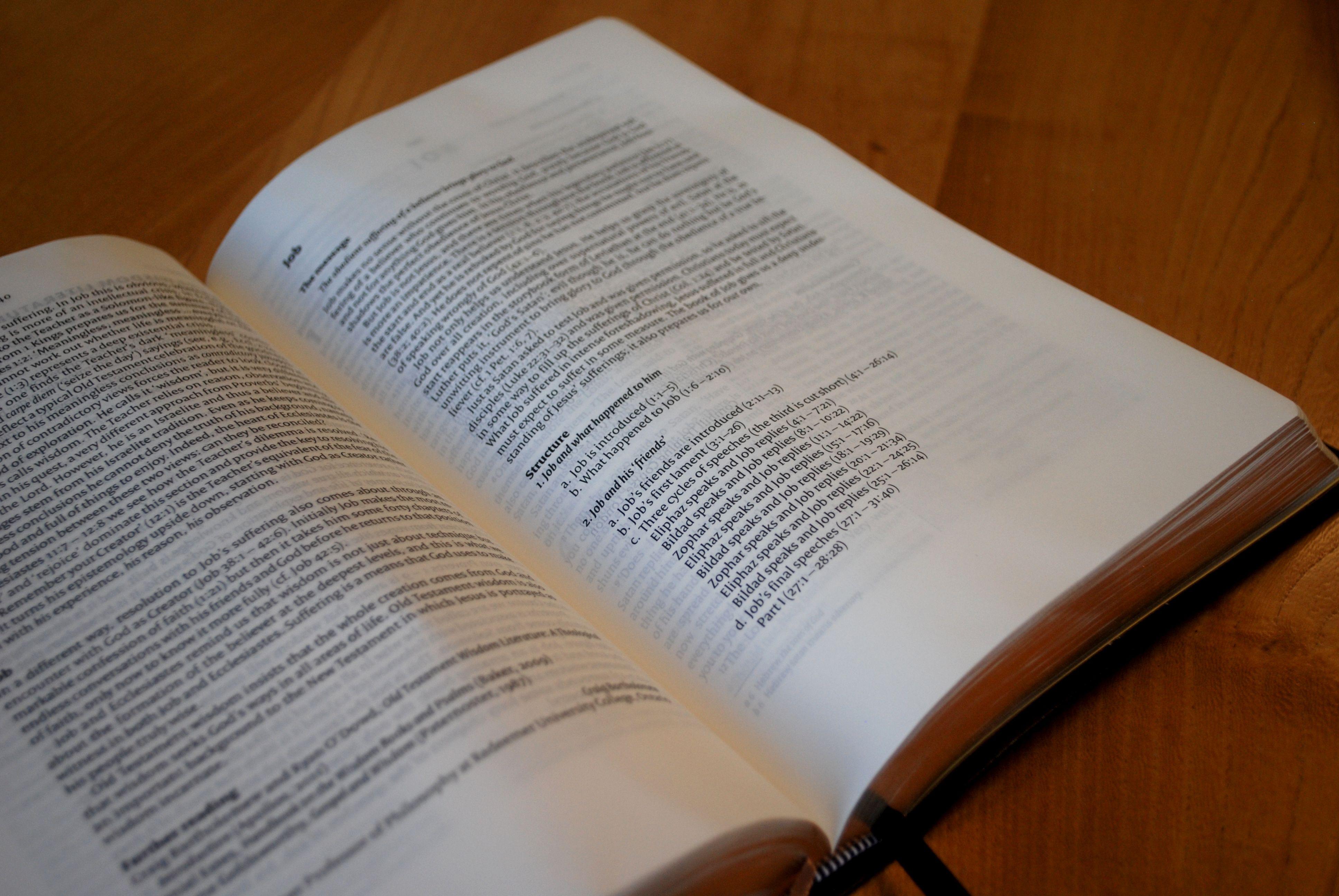 NIV Proclamation Bible (Leather) 9781444745610 £42.99