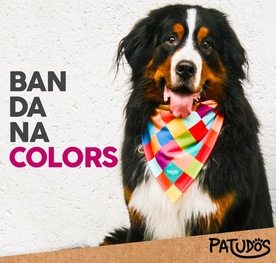 Alegre e moderno, esse é o estilo do seu pet! #patudos #mundopatudos #pet #cachorro #dog #colors #bandana #petshop