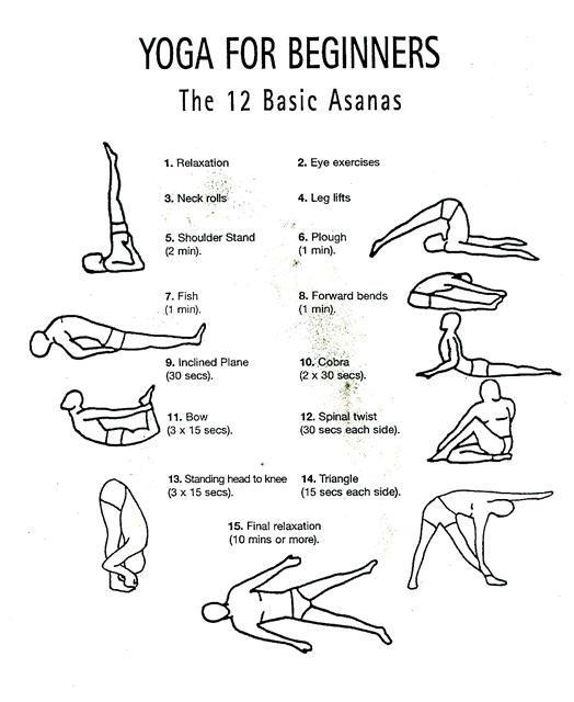 12 Basic Asanas Yoga For Beginners Yoga For Beginners Yoga Poses For Beginners Yoga Fitness