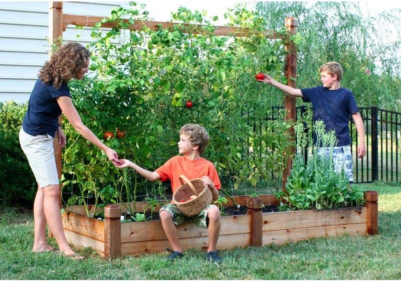 Vegetable Garden Planting Ideas Part - 36: Planting Vegetable Garden Is Perfect Place To Pick Up Projects And With  Rest Of Planting Vegetable, Until A Few Months,you Can Cut .